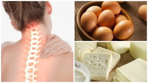Fortalece-tu-salud-%C3%B3sea-incluyendo-en-tu-dieta-estos-8-alimentos-ricos-en-calcio-500x281 Alimentos vegetais ricos em cálcio
