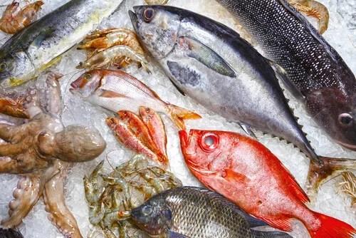 O-grau-de-umidade-1 Como identificar um peixe em mau estado?