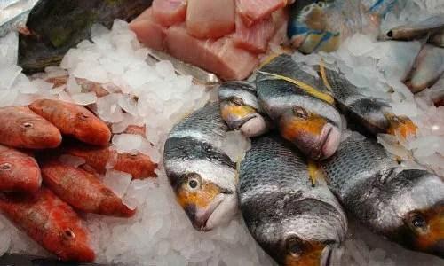 Peixe-em-mau-estado-500x300 Como identificar um peixe em mau estado?