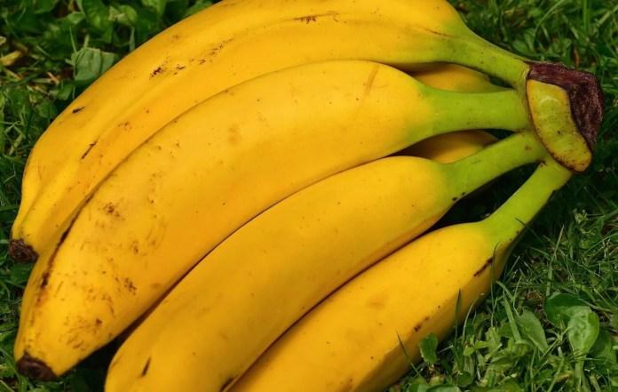 Cacho de banana