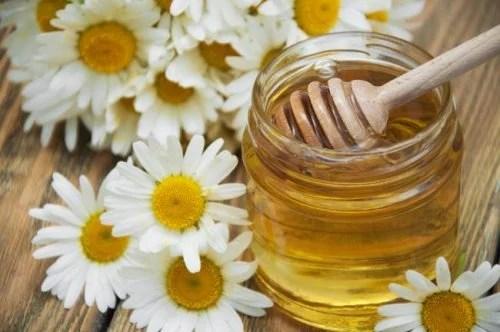 camomila-e-mel-500x332 6 remédios naturais para clarear as mãos