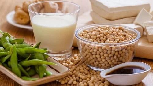 soja-500x281 Alimentos vegetais ricos em cálcio
