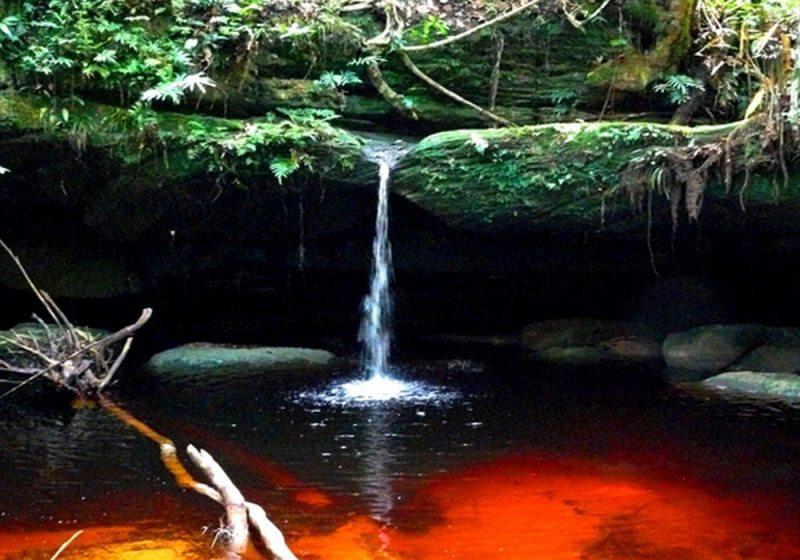 Cachoeira Do Rio Jaú