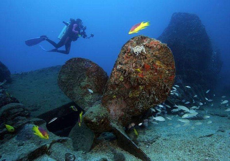 Mergulhar nos naufrágios De Olinda