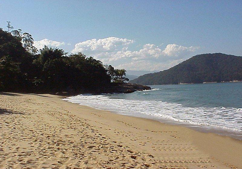 Praia Brava Do Sul