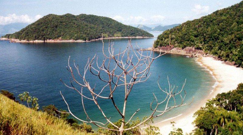 Praia da Figueira - Ubatuba