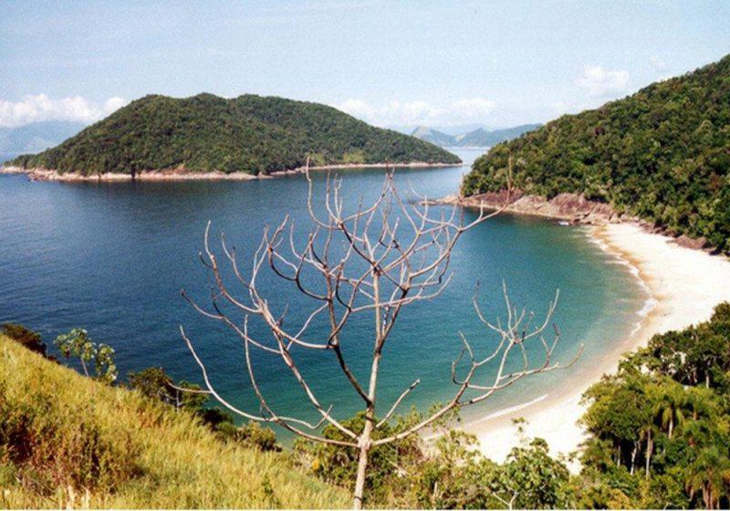 Praia da Figueira