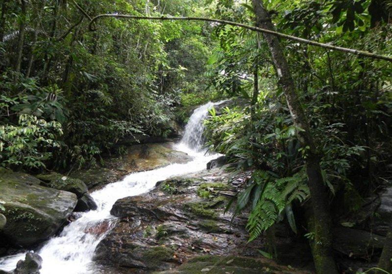 Cachoeira da Praia Brava