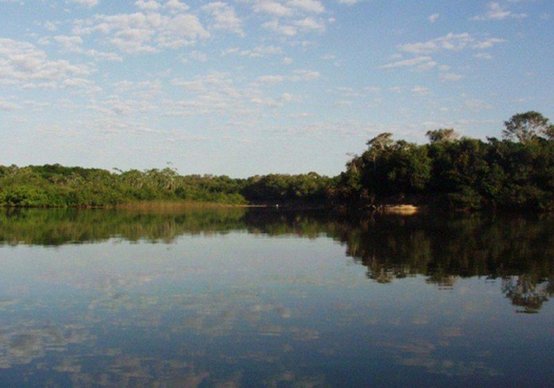 Espetáculos da natureza no parque estadual do cantão