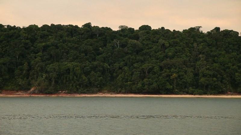 Floresta Nacional Itaituba