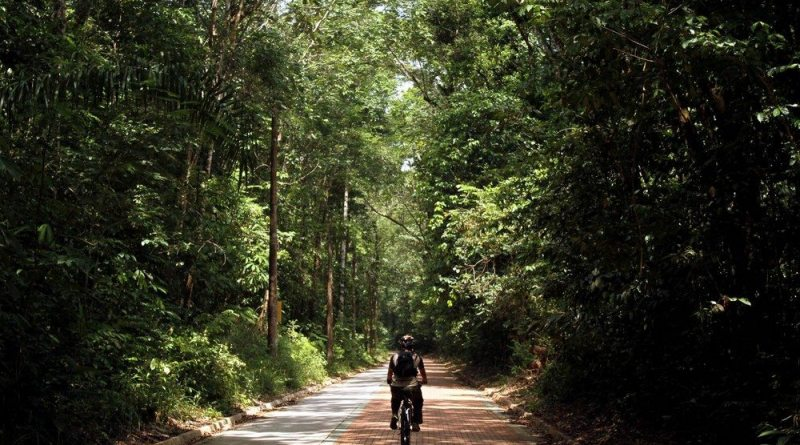Parque em plena Floresta Amazônica tem trilhas, ciclismo e rapel