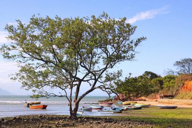 Praia Rasa Búzios
