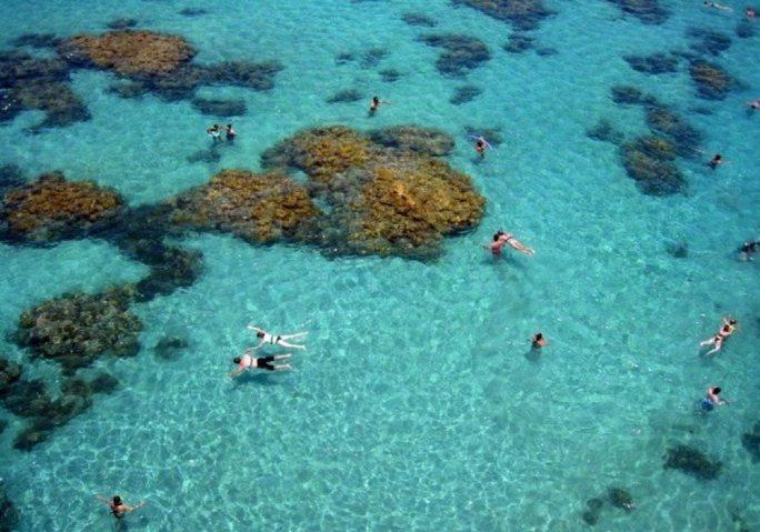 Maracajaú Mergulhe Num Aquário Natural Pertinho De Natal