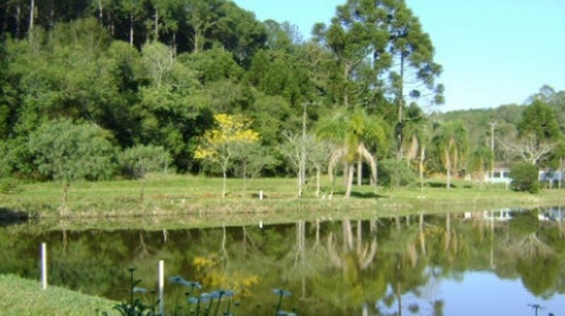 Floresta Nacional de Chapecó