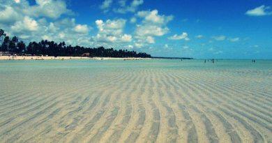 As Incríveis Praias De Alagoas