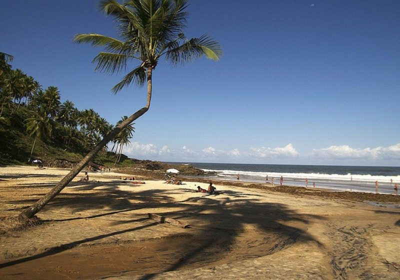 Itacaré Tem Cachoeiras E Lindas Praias