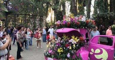 Expoflora Em Holambra