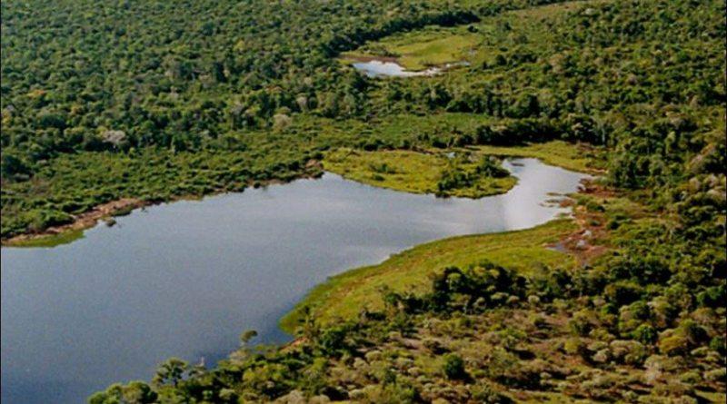 Ilha Do Bananal