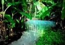 Conheça Jalapão, O Paraíso Escondido Do Tocantins
