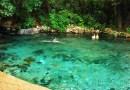Rio Azuis o menor rio da América Latina encanta turistas