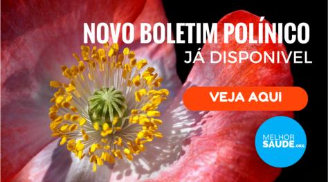 Boletim polínico melhorsaude.org melhor blog de saude