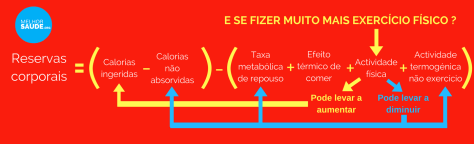 Dieta exercicio e metabolismo melhorsuade.org melhor blog de saude