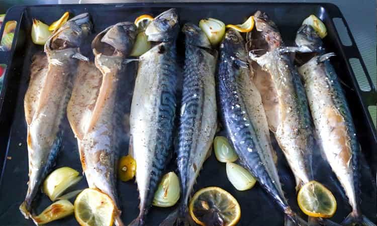 Makreel-uit-de-oven-2