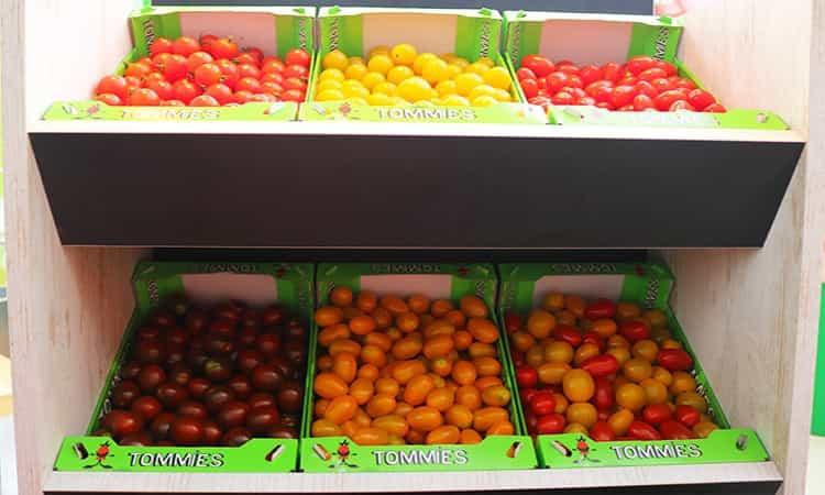 snack tomaten