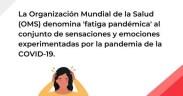 Consejo OMS fatiga pandémica