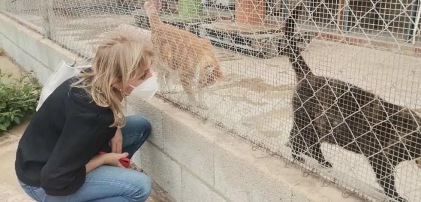 La consejera de Salud Animal en su visita a la Sociedad Protectora de Animales de Melilla