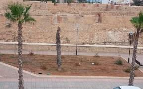 plantas de la Alcalzaba