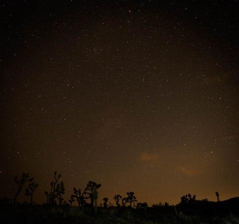 Joshua Tree- Astro Photography 1