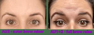 AU2 vs. AU1+2 image