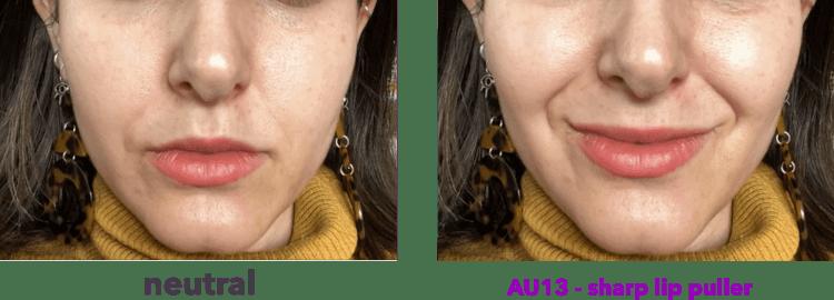 AU13 - sharp lip puller - levator anguli oris