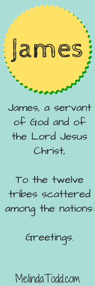 James1:1 bookmark