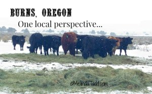Burns Oregon One Local Perspective