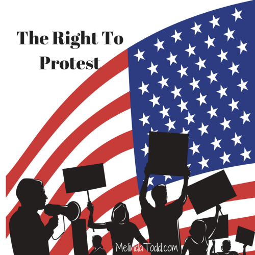 The Right To Protest by Melinda Todd
