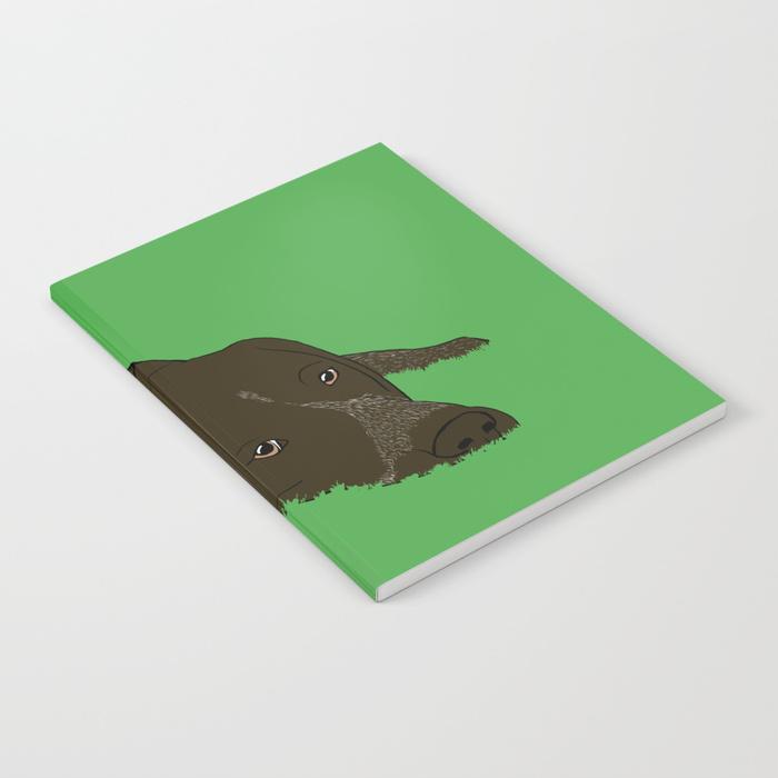 Gunner The German Shorthaired Pointer Journal