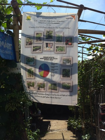Growing vegetables for the community3