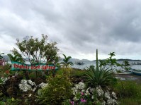 yolanda's rock garden