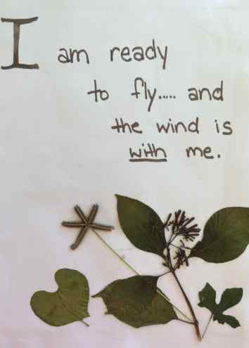 i am ready to fly