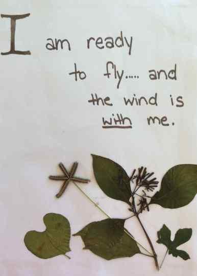i am ready to fly