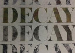 A marvelous book of photographs called 'Decay' by Nathan Troi Anderson and J.K. Putnam