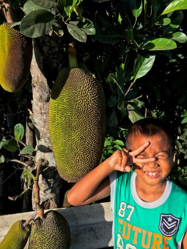 Jerry checking out the Jackfruit hanging by the roadside