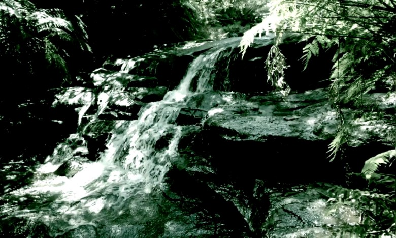 little mountain stream in black and white