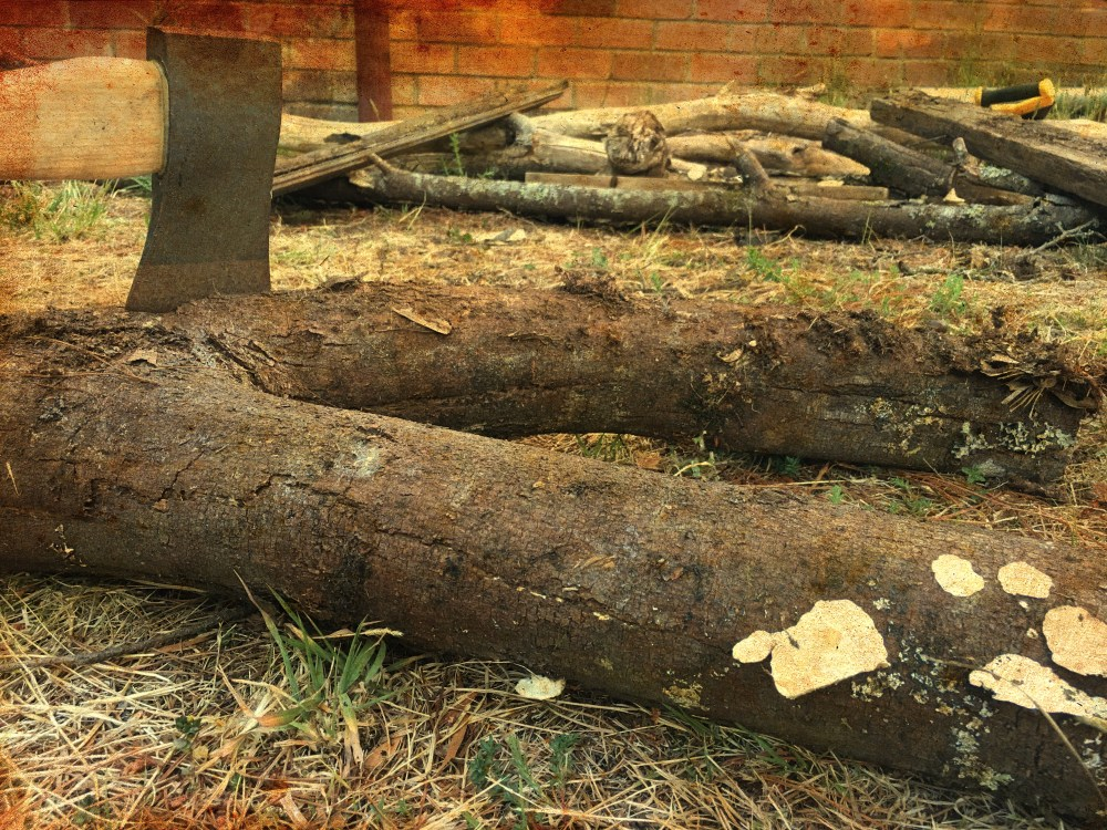 axe in a woodpile