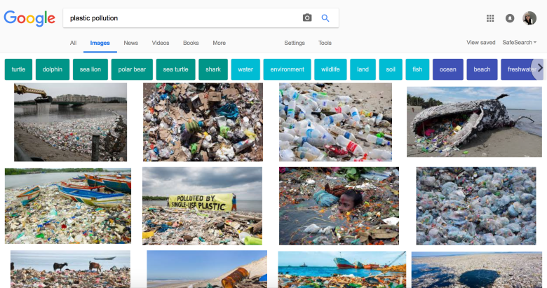 googling plastic pollution