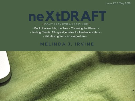 neXtDRAFT an eZine by Melinda J. Irvine Issue 22.