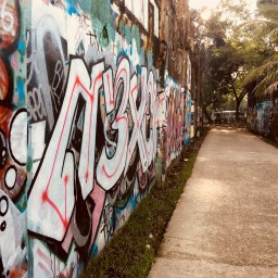 over this wall by Melinda J. Irvine4
