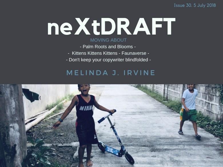 neXtDRAFT an eZine by Melinda J. Irvine Issue 29.